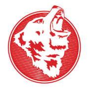 arctos logo