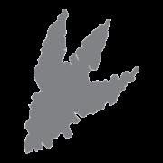 tyrex logo
